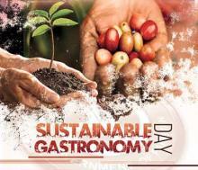 Sustainable Gastronomy