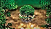 विकास और पर्यावरण के बीच जारी जंग (War between Development and Environment)